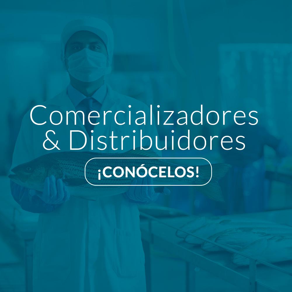 Imagen-Comercializadore-Distribuidores