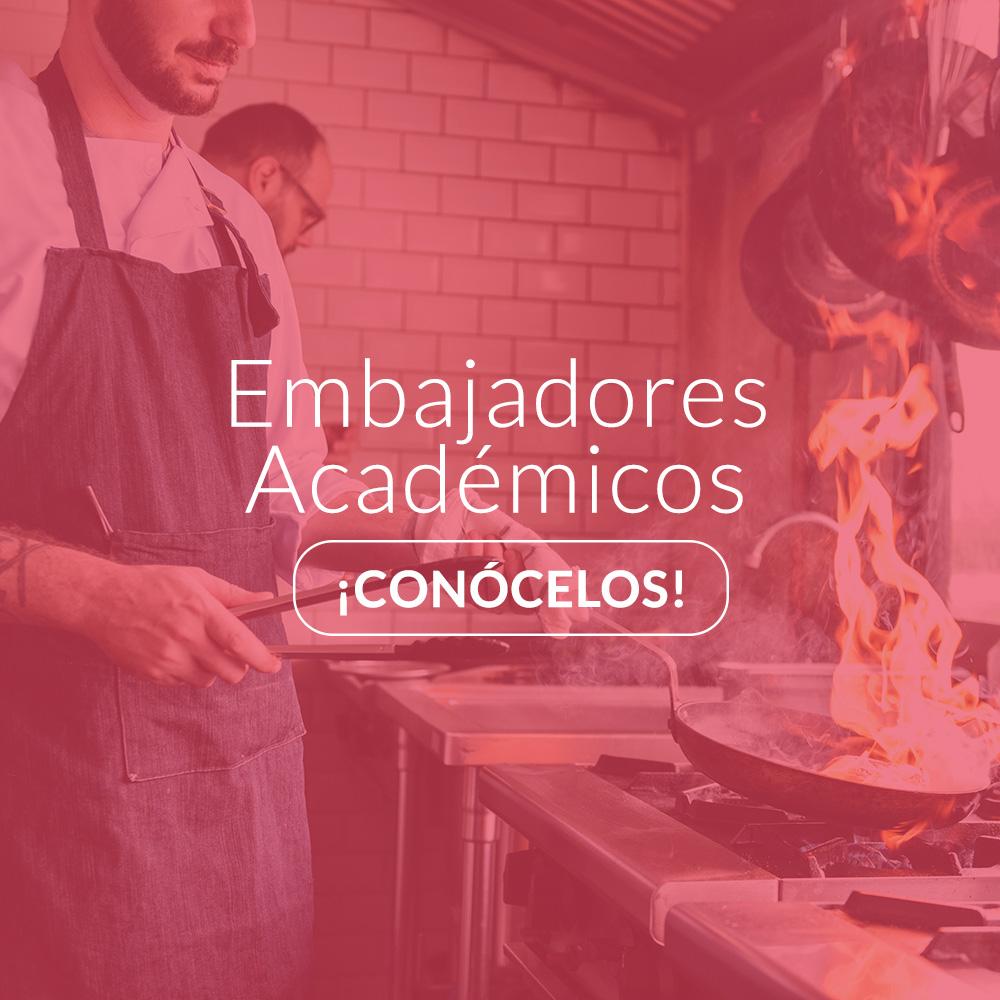 Imagen-Embajadores-Academicos