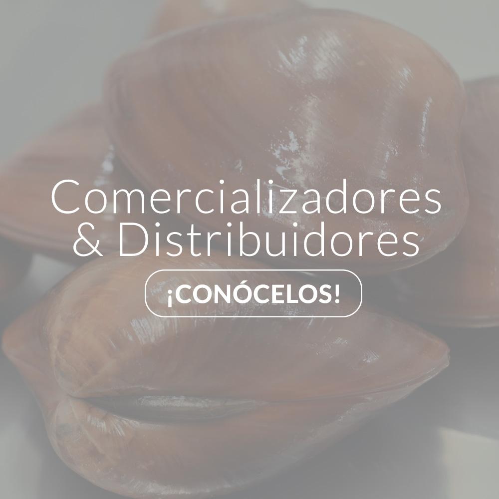 Imagen-Comercializadore-Distribuidores-gris-NUEVO