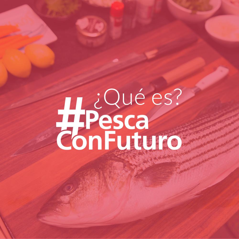 Imagen-Que-Es-PCF-OK